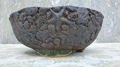 Bonsai Garden, Garden Art, Serving Bowls, Decorative Bowls, Frozen, Tableware, How To Make, Handmade, Channel