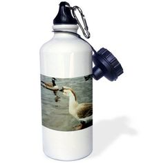 3dRose Mother Goose With Canadian Geese, Sports Water Bottle, 21oz