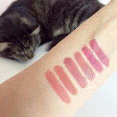 passingfancyEssence Matt Matt vs MAC swatches From L to R➡️ Essence 01, Mac Oxblood (Kinda Sexy alike), Essence 02, Mac Modesty, Essence 03, Mac Mehr✨ Well, they're not identical but pretty close to save some money #essencecosmetics #essence #mattmatt #mattelipstick #essencelipstick #maclipstick #maccosmetics #macdupes #macdupe #bbloggers #beautyblog #lipstickdupe #lipsticklove #lipsticks #mattelip #macmodesty #macmehr #maclippies