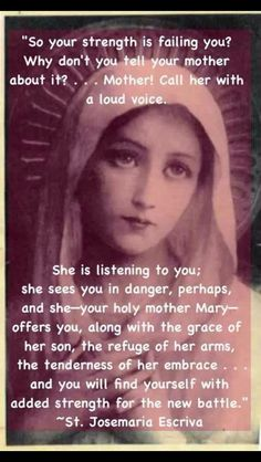 Novena for Impossible Requests to Mother Mary & Jesus Catholic Religion, Catholic Quotes, Catholic Prayers, Religious Quotes, Catholic Saints, Roman Catholic, Angel Prayers, Religious Pictures, Lord