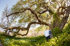 We had such an amazing time capturing Danielle and Matt's engagement session near Downtown Orlando! We began the session next to the Orlando Science Center, … Read the rest