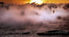 Whaleback Lighthouse in Kittery Point, ‪#‎Maine‬ this morning in heavy seasmoke. Image by Scott R Thorp Photography - visit to see more images