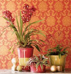 craft, terra cotta, outdoor pots, painted pots, exterior houses, decorating ideas, flower pots, terracotta pots, clay pots