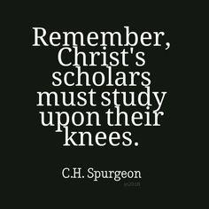 Knees study