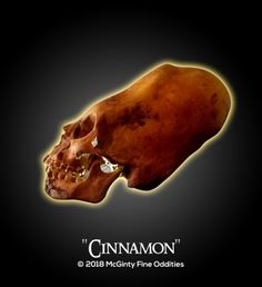 "'Cinnamon"" The Elongated Paracas Skull. www.FineOddities.com"