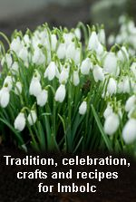 Imbolc, in the Celtic seasonal calendar marked the beginning of the lambing season and signaled the beginning of Spring and the stirrings of new life. It is Feile Brighde, the 'quickening of the year'. Fire Festival, Festival Lights, Wiccan, Magick, Witchcraft, St Bridget, Beginning Of Spring, Hedge Witch, Groundhog Day