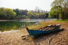 빛으로 쓴 편지 by Mistyfriday :: 서울의 봄 피크닉이라면 바로 이 곳, 서울숲의 봄풍경
