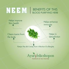 With the onset of rains, comes various diseases. So to keep away from all these diseases it would be beneficial to take neem products which has antiviral properties. @ayurvedicshopon.com #ayurvedicshopon #healthtips #herbalproducts