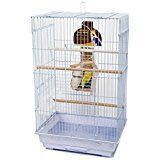 The Medium Bird Cage Kit by Penn Plax features a Square-Style cage which is the perfect home for your Cockatiel, Small Parrot, or other medium breed bird. Cute Birds, Small Birds, Pet Cage, Bird Cage, Conure Bird, Bird Types, Bird Perch, Cockatiel, Square