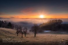 Great foggy sunrise on Pohorje hill, Slovenia Photos Of The Week, Milky Way, Slovenia, Landscape Photography, Travel Photography, Moonlight, Mists, Sunrise, Community