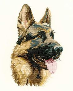 "Cash (APCA858)   German Shepherd (Alsation) cross stitch design by Heritage Crafts, part of their 'Animal Portraits' range of cross stitch kits.   Contents: 14 count aida or 27 count evenweave fabric, DMC stranded cottons, needle, chart and full instructions.   Size: 23cm x 15cm (9"" x 6"").      DELIVERY DETAILS: - Please allow upto 7 working days for dispatch."