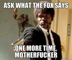 What does the fox say lol #motd