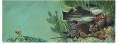 The Hermit Crab : : Carter Goodrich