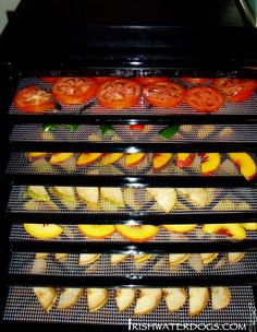 A food dehydrator is a fantastic way to take food along on long hiking trips | IRISHWATERDOGS - Kayaking, Hiking, Camping and Outdoors.