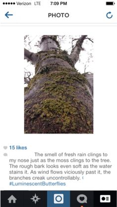 Using Instagram for descriptive writing