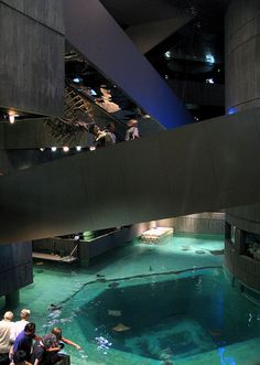 national aquarium in baltimore. one of the my FAVORITE places ever. I will go back!