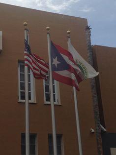 Cámara de Comercio (10:06am) segun el reglamento las banderas estan correctamente.