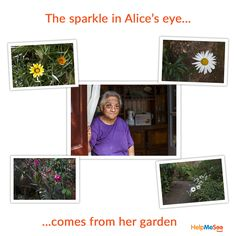 A year ago Alice from Madagascar began to go blind because of cataracts. The flowers in her garden, a hidden gem off the streets of Antananarivo, began to blur and eventually she could no longer make out anything beyond a vague color.    At 69 years old, she was one of the first patients treated in as part of HelpMeSee's partner launch in the country.   Thankfully Alice is back in the garden again, bringing beauty to her world and the sparkle in her eye is back.