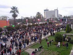 Dita e Veres Elbasan Albania