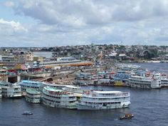 Manaus, Brazil Brazil Amazon, Amazon River, Top Travel Destinations, The Places Youll Go, Travel Pictures, San Francisco Skyline, Cruise, Tours, Brazil Brazil