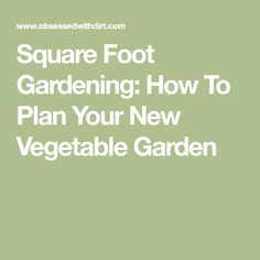 Square Foot Gardening: How To Plan Your New Vegetable Garden