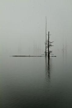 Lake Conway | Photo by Jon Wisniewski