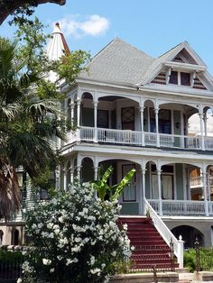 Love the historic Galveston homes