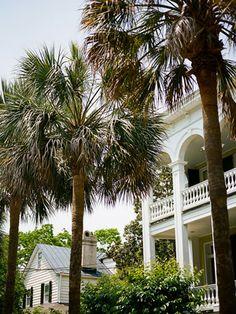 Island Plantation Honeymoon Inspiration, Charleston, SC