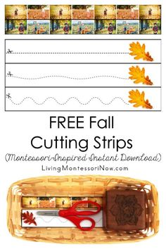 Cutting Activities, Cutting Practice, Small Wooden Boxes, Autumn Activities For Kids, Printable Workouts, Classroom Setup, Exercise For Kids, Creative Teaching, Parenting Hacks