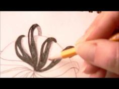 How to draw tanglepattern Aquafleur - YouTube