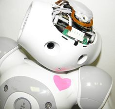 My Nao robot