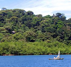 Panama, gutan lake i took an unplanned swim in this spot gutan lake is a part of the canal and is man made the flooded the valley space between  mountians and is hundreds of feet deep we saw a coral snake while we were kayaking here