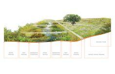 Henry Palmisano Park | Chicago Natural Park Design
