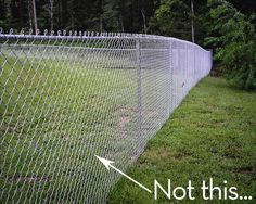 Love this idea! We use our fencing around the garden as trellis as well. So much more economical than using expensive wood or plastic trellis.