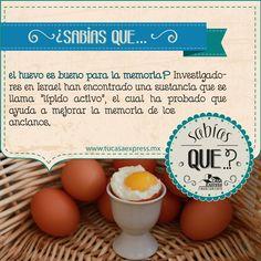 ¿Sabías que… el huevo puede mejorar tu memoria? Tu Casa Express #Salud