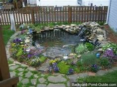 above ground turtle ponds for backyards - Bing Images