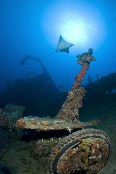 Truk Lagoon, world's best wreck diving destination. ©Ethan Gordon