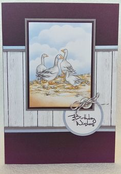 Get the amazing new Jayne Nestorenko products online now at Crafter's Companion and join Club Inspire to receive discount today. Crafters Companion Cards, Summer Collection, Dreaming Of You, Birds, Crafty, My Favorite Things, Stamps, Painting, Animals