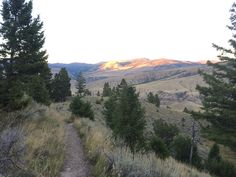 5 Things To Do In Yellowstone: A Local's Guide   Sierra Trading Post Blog