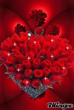 Gorgeous Bouquet of Red Roses gif ~ Collection of pictures, click the picture to see them. Roses Gif, Flowers Gif, Beautiful Rose Flowers, Love Rose, Beautiful Flowers, Red Flowers, Beautiful Love Pictures, Beautiful Gif, Hearts And Roses