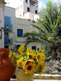 One day... :) Ibiza | Spain