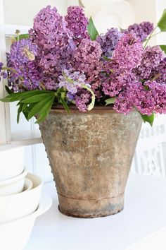 Lilacs | Country Flowers                                                                                                                                                     More