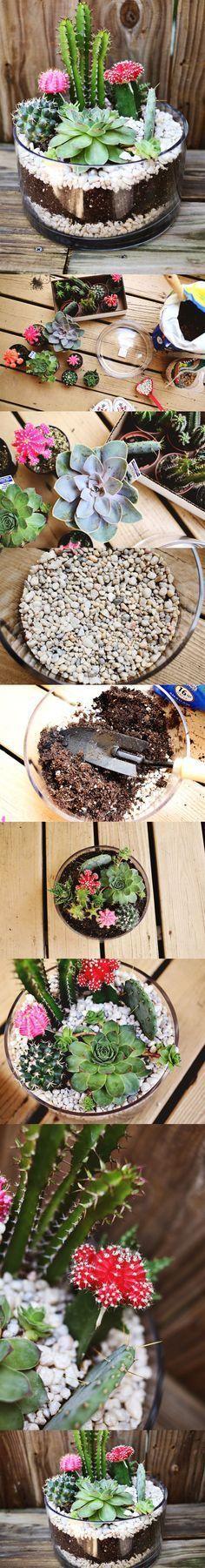 terrarium! cacti terrarium, succulent container garden, succulents, DIY terrarium #containergardening