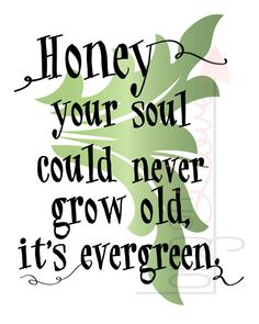 Honey your soul could never grow old it's evergreen