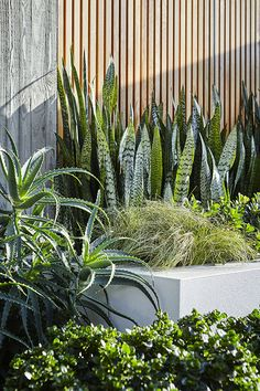 Landscape Gardening Courses Nottingham those Contemporary Garden Landscape Design Ideas toward Landscape Gardening Jobs London Landscape Materials, Landscape Plans, Landscape Architecture, Landscape Design, Architecture Design, Contemporary Garden Design, Contemporary Landscape, Tropical Landscaping, Garden Landscaping