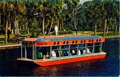 Glass-Bottomed Boat, Silver Springs, Florida, c. Florida Girl, Old Florida, Vintage Florida, Florida Travel, Places To See, Places Ive Been, Summer Memories, Vacation Memories, Sunshine State