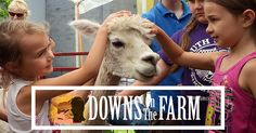 Episode 29 - In this episode, we talk to Shawna Hodges from DownsOnTheFarm.org. This unique venue combines animal therapy for kids with special needs, an animal rescue, and agritourism activities that are open to the public. Shawna discovered the need for this type of service shortly after their son Grady was born in 2008 with Down Syndrome. She tells us what it took to get a 501c3 non-profit started as well as some of the current things they have going on after relocating their family…