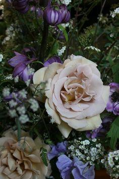 Fleurs de Fallon: may oh may