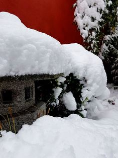 lanterne japonaise yukimi sous la neige