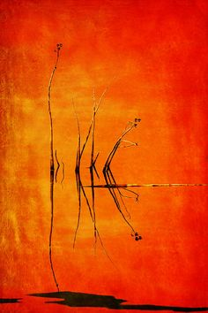 """Winner of last week's """"Office Art Decor"""" Contest!  """"Reeds And Reflection In Orange"""" by Nikolyn McDonald.   #officeartdecor #office #art #officeartwork"""